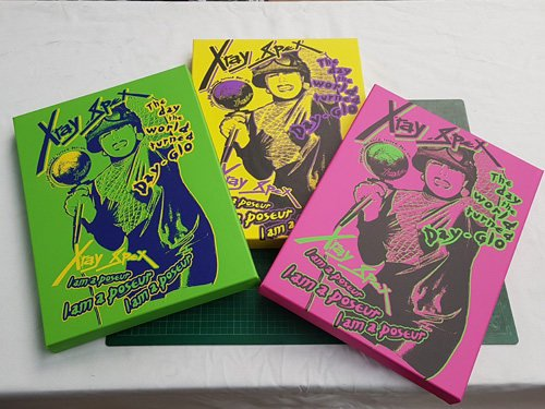X-Ray Spex – Day the World Turned Day-Glo Canvas